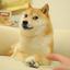 ___DOG price logo