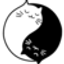 _NYAN price logo