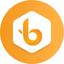 BIST price logo