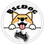 BSCDOG price logo