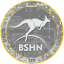 BSHN price logo