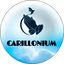 CAROM price logo