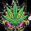 CHRONIC price logo