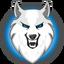 DIREWOLF price logo