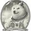 DOGEDOLLAR price logo