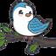EBIRD price logo