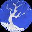 FORESTPLUS price logo
