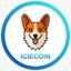 ICIE price logo