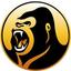KONG price logo