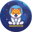 NASADOGE price logo
