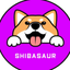 SHIBS price logo